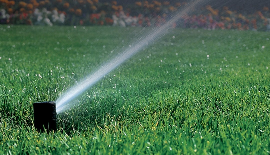 If you've heard it once you've heard it 100 times- keep sprinkler systems maintained.