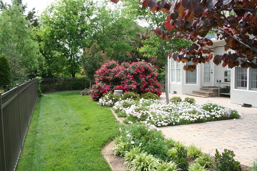 Advanced Lawn groomed landscape bushes and flowers