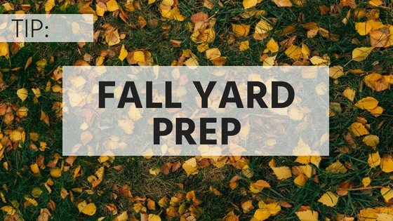 TIP: Fall Yard Prep