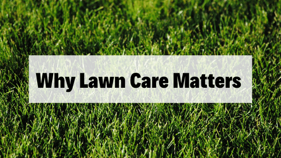 Why Lawn Care Matters