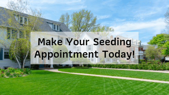 Make Your Seeding Appointment Today