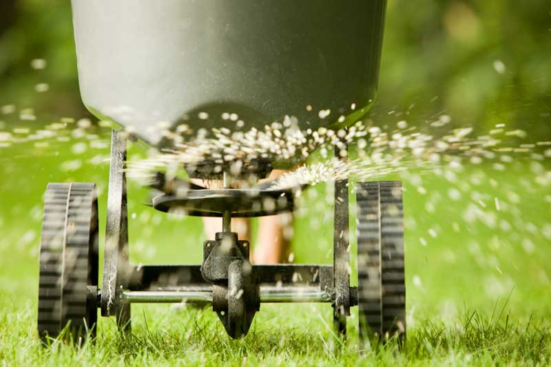 Seeding – It's that time of the year
