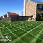 Advanced Lawn green lawn photo- striped lawn - seeding