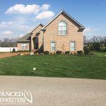 Advanced Lawn green lawn photo - seeding