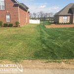 Advanced Lawn Comparison Photo - seeding