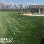 lush green lawn backyard and pool - seeding