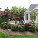 Advanced Lawn groomed landscape bushes