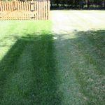 advanced lawn comparison